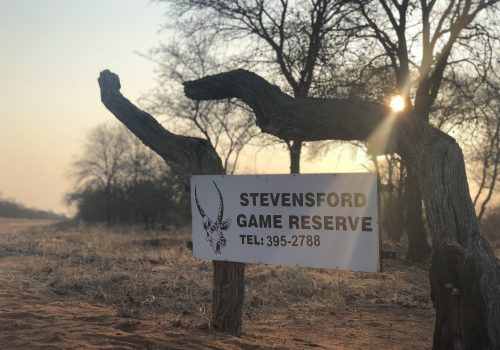 Stevensford Game Reserve